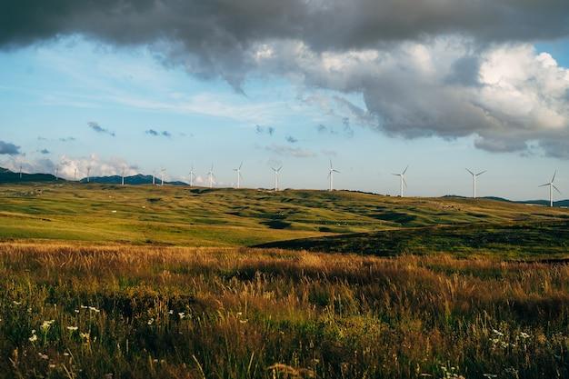 많은 수의 풍력 터빈이 푸른 하늘과 벨벳이있는 해질녘에 들판에 서 있습니다.