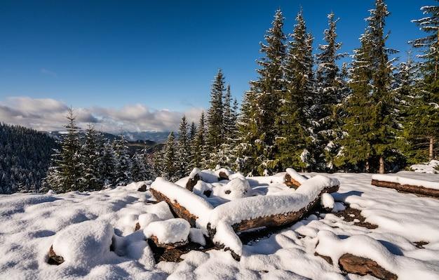 카르 파티 아 산맥에서 하이킹을 할 수있는 눈 덮인 대형 캠프 파이어 사이트 i 밝고 차가운 태양