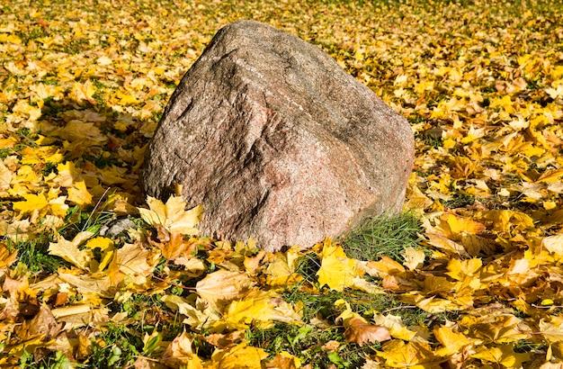 Большой камень лежит на пожелтевших кленовых листьях, упавших на зеленую траву в осенний сезон, крупным планом на природе в солнечный день ранней осенью в сентябре или октябре.