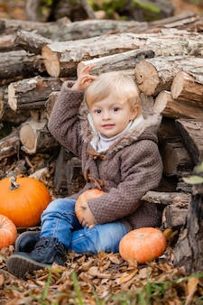 秋の服を着た小さな金髪の少年は、カボチャと丸太の森に座って笑っています