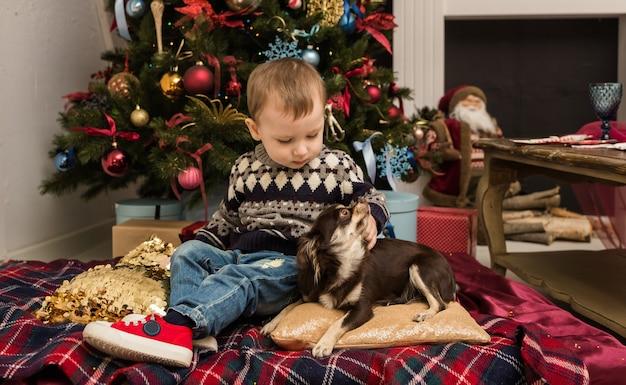 스웨터를 입은 어린 소년이 크리스마스 트리 근처에 앉아 치와와 강아지와 놀고 있다