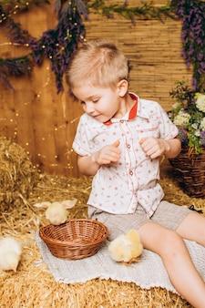농장의 어린 소년이 닭을 바라보고 있다
