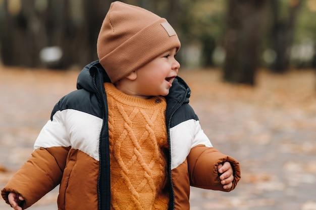 小さな男の子が秋の公園で微笑んでいます。家族が黄金の秋の自然公園を歩きます。