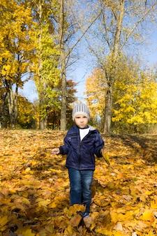 화창한 따뜻한 날씨에 가을 공원에서 어린 소년 산책