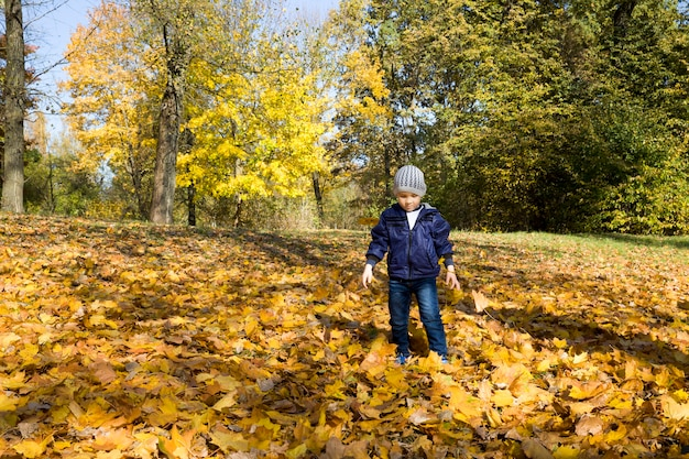 Маленький мальчик гуляет в осеннем парке
