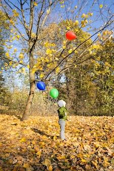 小さな男の子が秋の公園を歩く