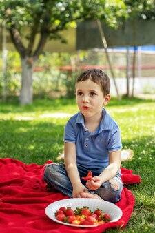 小さなかわいい赤ちゃんが毛布の上で庭に座って、赤いジューシーで新鮮なイチゴを食べます