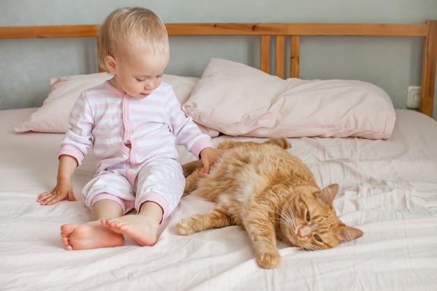 작은 귀여운 소녀는 뚱뚱한 생강 고양이 스트로크와 함께 침대에 앉아 그와 함께 노는