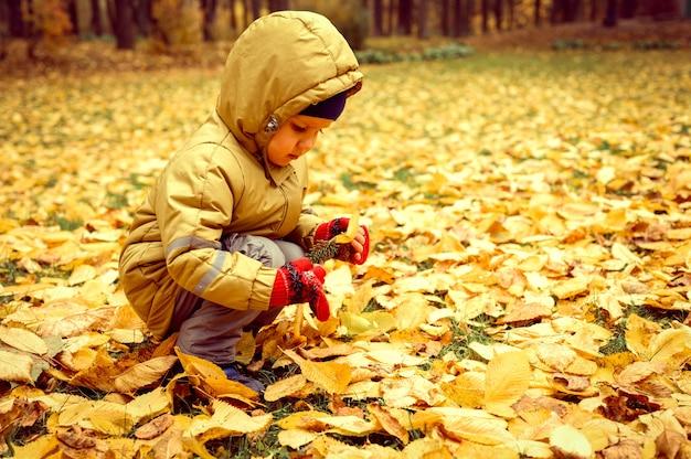 Четырехлетний мальчик играет с опавшими оранжевыми листьями вяза в осеннем лесу или парке. исследуя мир.