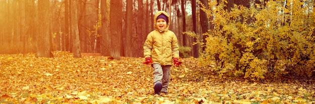 Маленький четырехлетний ребенок счастливый улыбающийся мальчик гуляет в осеннем лесу или парке. баннер. вспышка