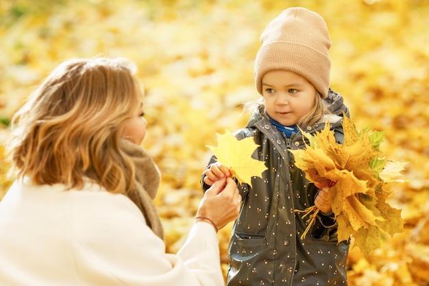 가을 공원에서 3-4세 어린 소녀가 단풍나무 꽃다발을 모으는 어머니와 함께 있습니다. 사랑과 부드러움.
