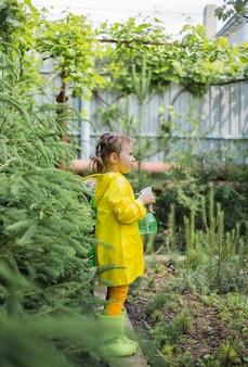 Маленькая девочка-помощница в желтом плаще опрыскивает растения мельницей среди хвойных деревьев и сосен в теплице