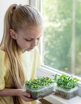 창가의 어린 소녀가 마이크로그린이 자라는 모습을 지켜보고 있습니다.