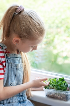 창가에 있는 어린 소녀가 초미량 완두콩이 자라는 모습을 지켜보고 있습니다. 프리미엄 사진