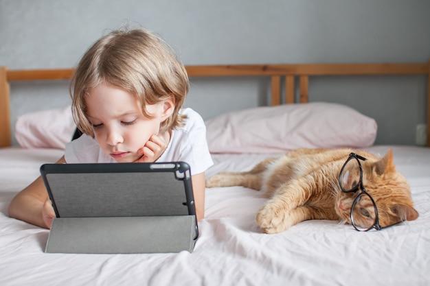 어린 소녀는 그녀 옆에 온라인으로 숙제를 하고 안경 통신을 하는 뚱뚱한 생강 고양이