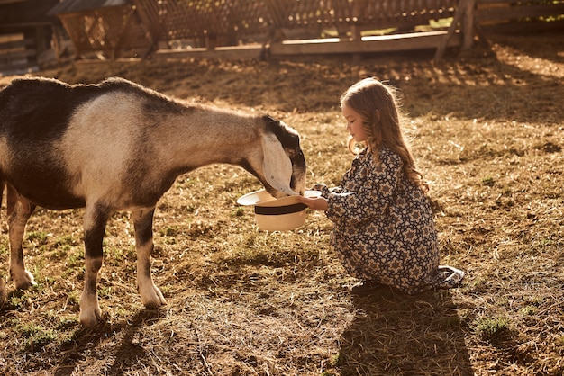 어린 소녀는 동물들과 함께 농장에있는 것을 즐깁니다.