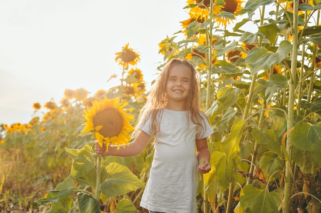 小さな女の子が大きな咲くひまわりを持っています。黄色いヒマワリの花びら。夏に関連する自然の背景。収穫の準備
