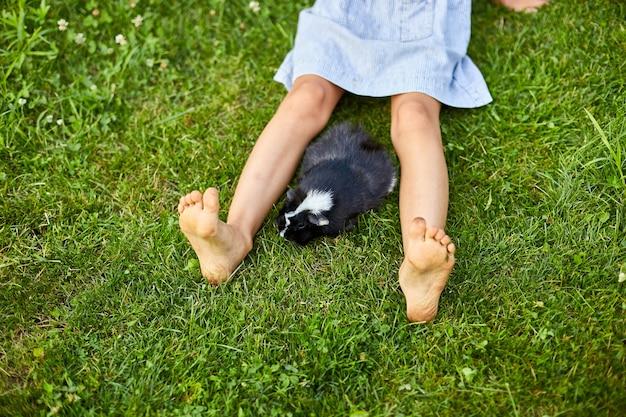 Маленькая девочка играет с черной морской свинкой, сидя на открытом воздухе летом