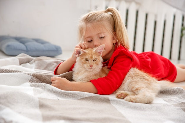 家の床に横たわっているマンクン子猫を持つ少女。人間の家族とペットの概念