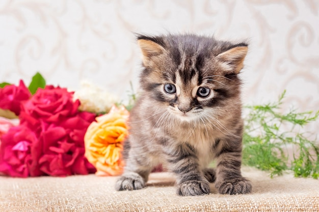 花の花束の近くの小さな子猫。休日の挨拶のためのバラ。花セール_