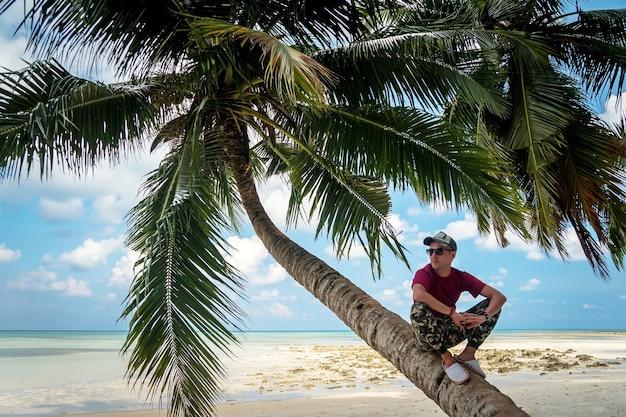 青い海と空を背景に、カリブ海の孤独なヤシの木。海岸では、エキゾチックな木の下に座って、観光客を休ませてリラックスさせます。ヤシの葉の陰に座っている若い男
