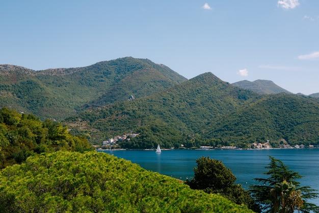 孤独な帆船が、密に植えられた木々とともにモンテネグロ沖の水の中を滑空します