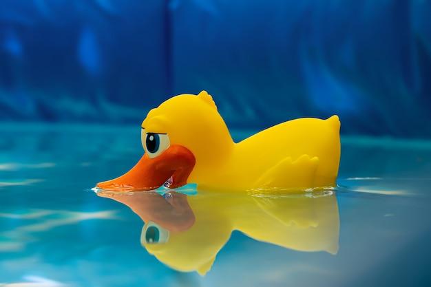 Одинокая желтая утка в надувных какашках