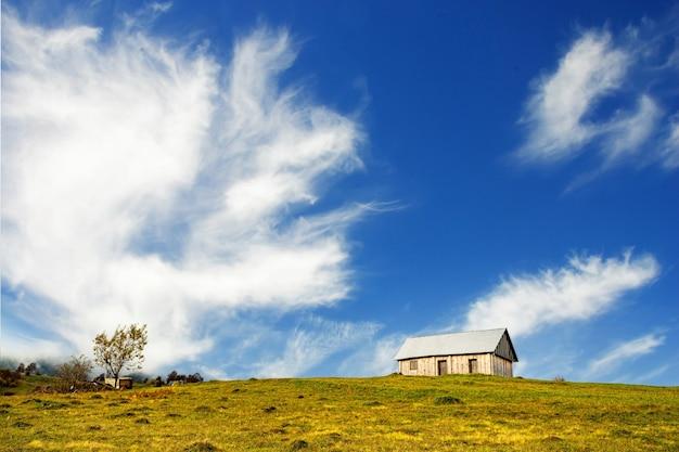 Одинокий серый дом стоит на мокром зеленом лугу среди густого серого тумана.