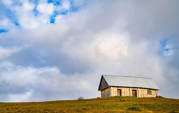 외롭고 작은 회색 집이 짙은 회색 안개 속에서 신선한 젖은 녹색 초원에 서 있습니다.