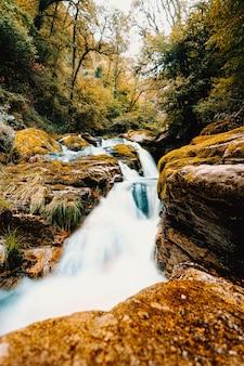 秋に森を流れる川の長時間露光ショット