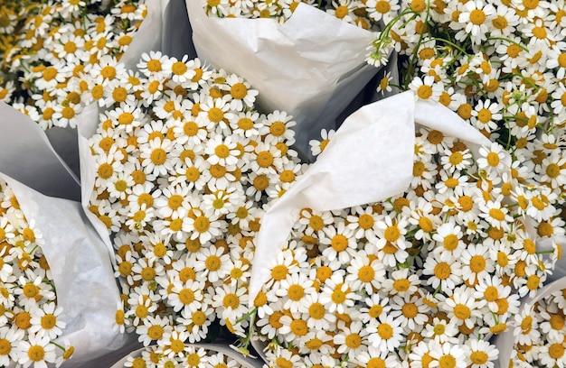 カモミールの花束がたくさん、上面図