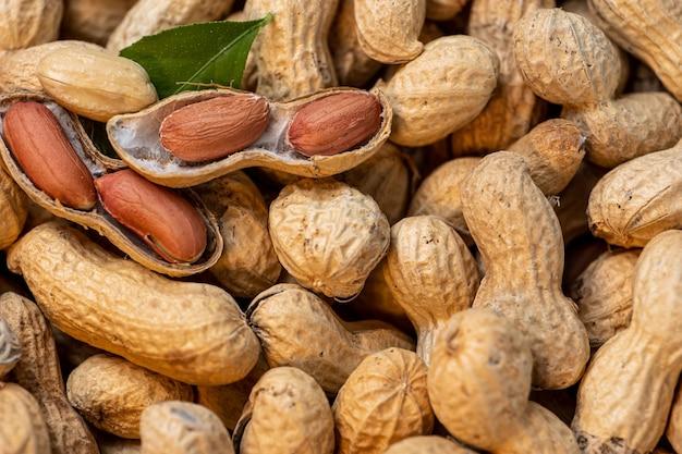 多くのピーナッツはほとんどすべて閉じており、いくつかは開いた緑の葉です