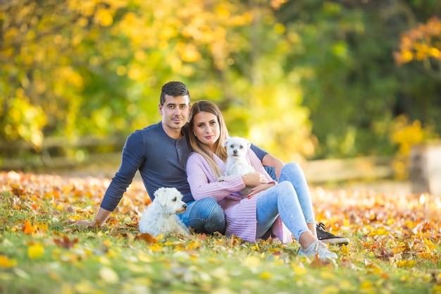 秋の公園で犬と愛情のあるカップルが葉の上に横たわっています。
