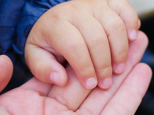 사랑이 많은 어머니는 아이의 손을 잡습니다. 신생아의 손