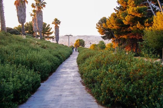 バルセロナの魔法の自然、公園、たくさんの緑の植物や木々