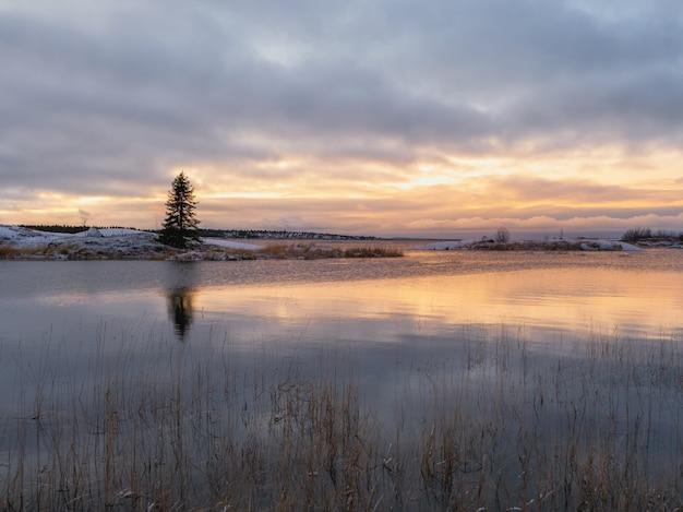 水に映る島の孤独なクリスマスツリーと魔法の夕日。最初の霜。