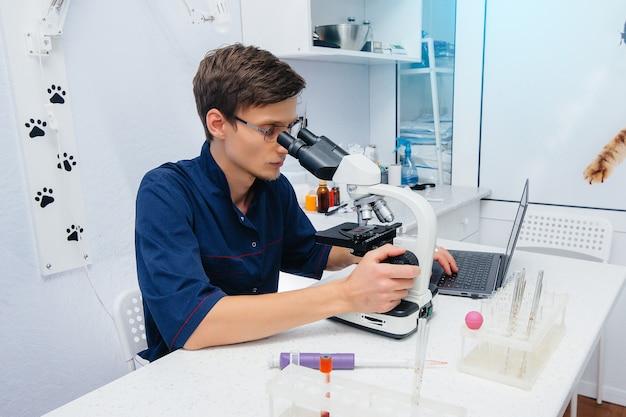 실험실의 한 남성 의사가 현미경으로 바이러스와 박테리아를 연구합니다. 위험한 바이러스 및 박테리아 연구.