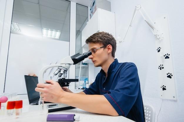 研究室の男性医師が顕微鏡でウイルスやバクテリアを研究しています。危険なウイルスやバクテリアの研究。