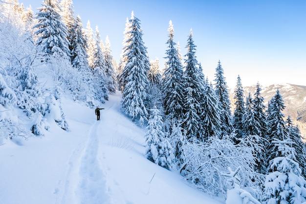 빙하에 오르막을 걷고 남성 산악인. 맑은 겨울 날에 눈 덮인 산에 등산객.