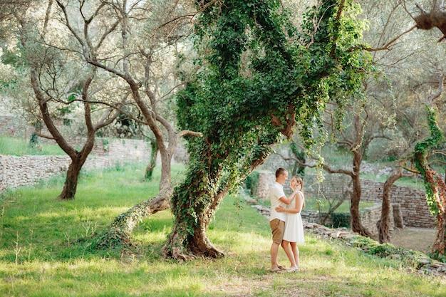 Мужчина и женщина обнимаются возле красивого, увитого плющом дерева в оливковой роще.