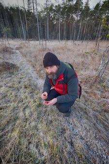 霜の後で男が湿地でクランベリーを集める
