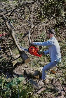Мужчина срубает упавшее дерево бензопилой.