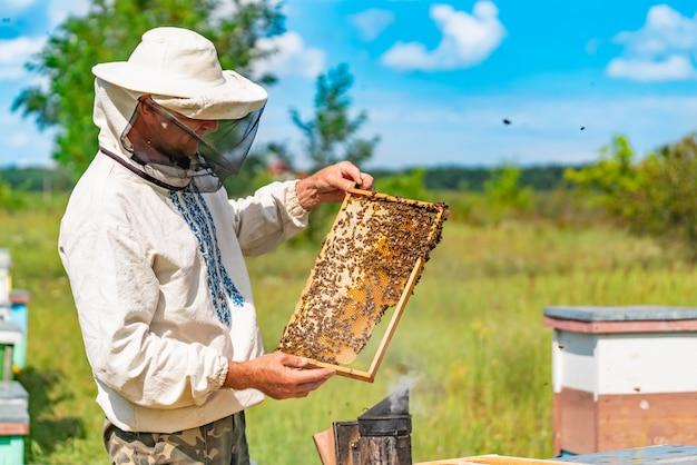Мужчина в защитном костюме и шляпе держит раму с сотами пчел в саду