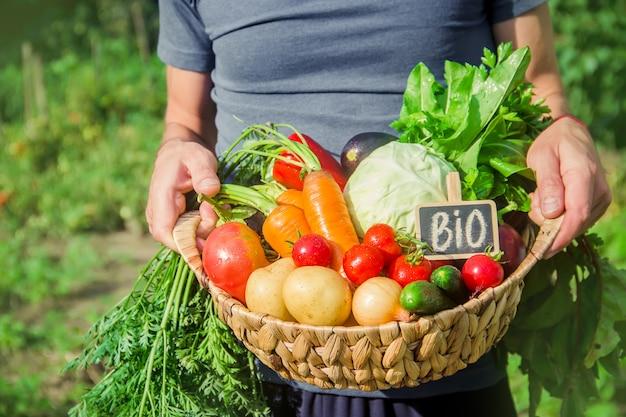野菜を手にした庭の男