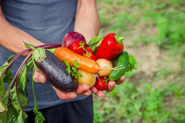 Мужчина в саду с овощами в руках.