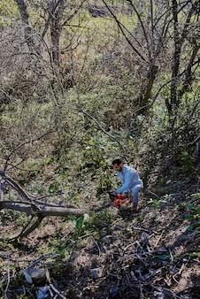 Мужчина вырубает деревья посреди леса.