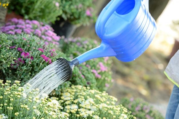 男がじょうろから花に水をまきます。