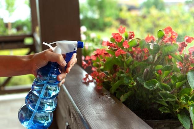 한 남자가 테라스의 아름다운 정원에서 붉은 꽃에 물을 주고 있다