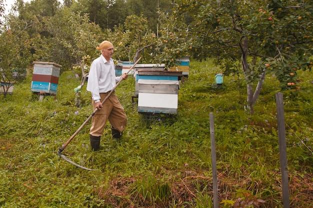 Мужчина косит траву. деревенская жизнь: заготовка сена на зиму. корма для животных. коса крупным планом