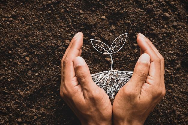 사람의 손이 그의 상상력, 환경에 대한 아이디어로 나무를 심고 있습니다.